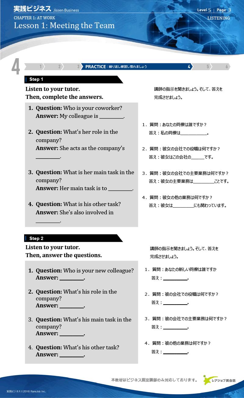 実践ビジネス レベル5 サンプル